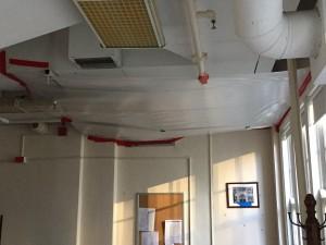 603 Ceiling
